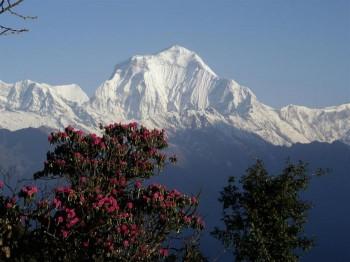 Dhaulagiri Circuit trek, Nepal