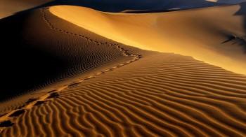 Namibia Desert, Namibia