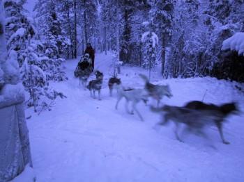 Rovaniemi, Lapland: visiting real Santa Claus