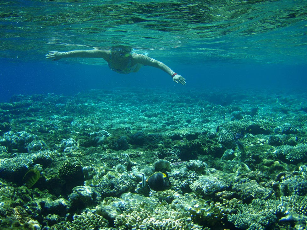 Snokering Red Sea near Tiran Islands