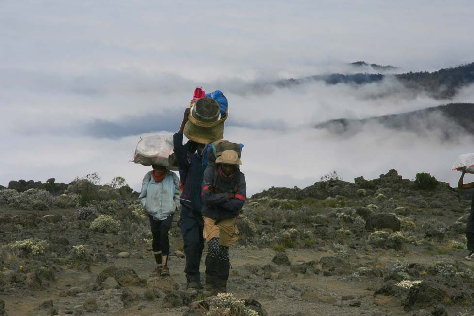 5th-6th day: Shira Camp 3840 – Lava Towers 4600 – Barranco Camp 3950 m – Barranco wall– Barafu Camp 4600