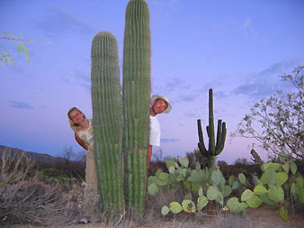 Saguaro: 5-meter cactus forests near Mexico border