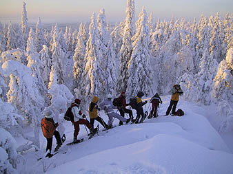 Cross-country skiing expedition in Koli mountains, Finnish Karelia