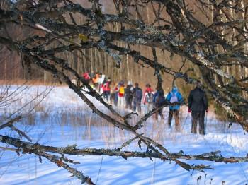 Cross country skiing around Asari lake