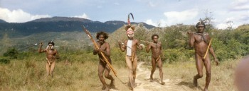 Baliem valley ethno tourism, Indonesia, New Guinea